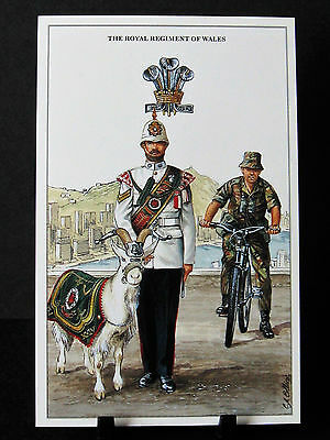 Geoff White – The British Army Series – No 39  – The Royal Regiment of Wales