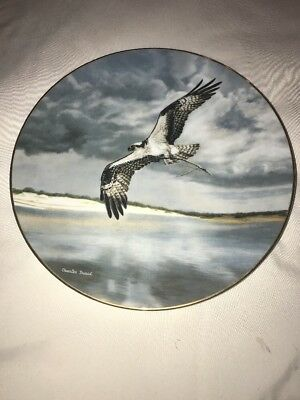 "22 K Gold Band ""The Osprey"" Birds Of Prey 8 1/2"" Plate By Charles Frace' W/ COA"