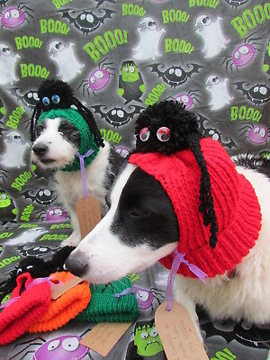 Dogs Halloween Costume My Little Spider Monster Hand Knitted by Mrs Nibbles