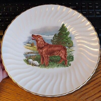 VTG HUNTING DOG DECORATIVE DINNER DISPLAY PLATE IRISH SETTER hand painted?