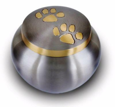 "Solid brass cat dog pet paw print cremation funeral urn pewter LARGE 6"" BNIB"