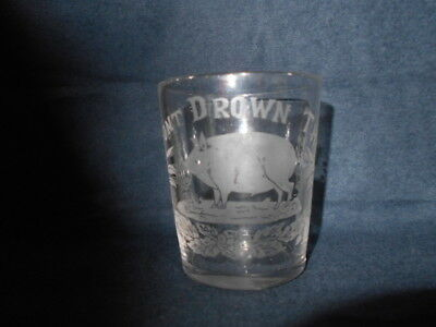 Antique Pre Pro Whiskey Shot Glass Etched Don't Drown Pig Sowsed Victorian 1880