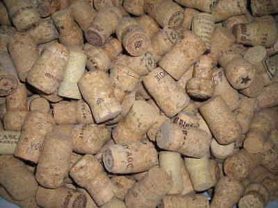 170 plus Used Champagne Wine Corks NO SYNTHETIC NO WINE ALL CHAMPAGNE NO CAGE