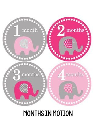 Months in Motion 246 Monthly Baby Stickers Baby Girl Elephants Months 1-12 Mi...
