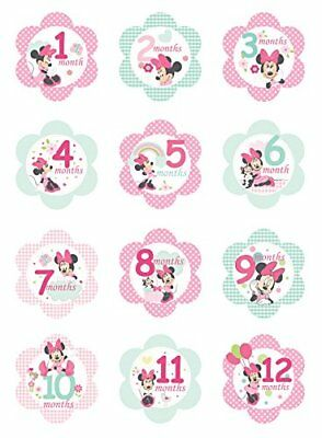 Disney Baby Minnie Mouse Milestone Flower Stickers