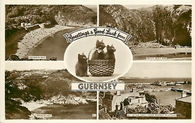 s10138 Multiview, Guernsey RP postcard unposted