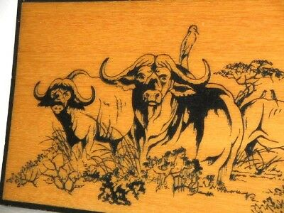 African Buffalo & Bird Etched in Wood & Painted 38.5cm Wide 19cm High 1cm Thick