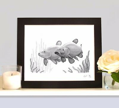 TINCAS CRUISING MOUNTED Art Print Picture Present For Tench Angler Fisherman