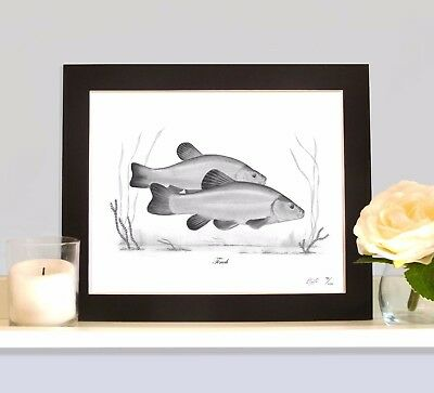 TENCH Art Print MOUNTED Picture Present For Tench Angler Fisherman