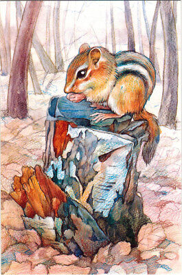 LITTLE CHIPMUNK IN FOREST Modern Russian postcard