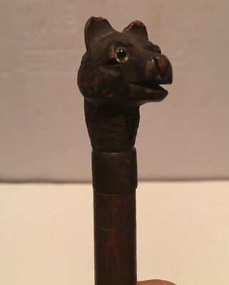 Antique Carved Bear Parasol Handle With Glass Eye