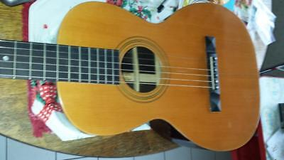 Stetson  Guitar All Original And Nearly Unplayed