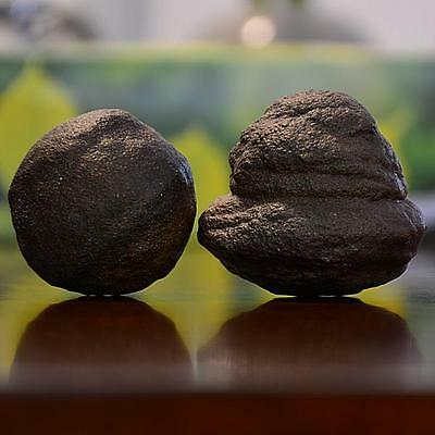 Beautiful Pair of Giant Moqui Marbles (Shaman Stones) from Utah 340 grams