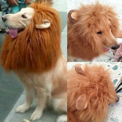 UK Pet Costume Lion Mane Wig for Pet Dog Cat Halloween Clothing  Fancy Dress up