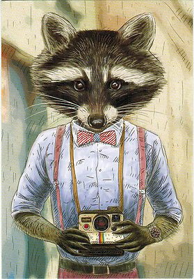 THIS RACCOON ENJOYS PHOTOGRAPHY Modern Russian postcard