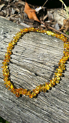 Baltic Amber Child Baby Necklace nuggets honey col. w Cert. of Autheticity