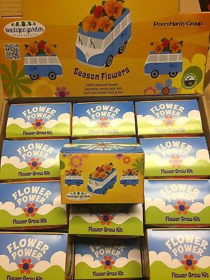 48 x Wholesale Joblot Blue Bus Flower Grow Kit Home Office Designer Gift