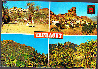 Vintage Unused  Postcard,  Morocco Tafraout, MultiView