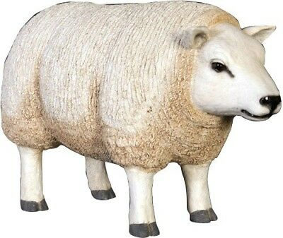 Sheep Texelaar Head Up Resin Statue Farm Display Prop Decor