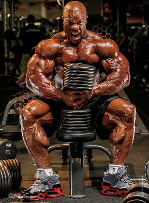 """254 GYM - Phil Heath Body Building Muscle Exercise Work Out 14""""x19"""" Poster"""