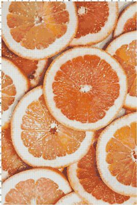 Orange Slices DIGITAL Counted Cross-Stitch Pattern Needlepoint Chart