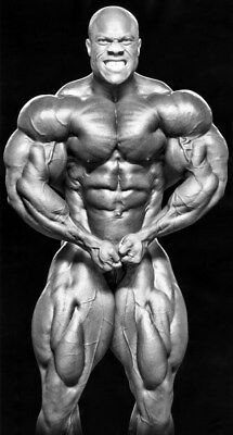 """240 GYM - Phil Heath Body Building Muscle Exercise Work Out 14""""x26"""" Poster"""