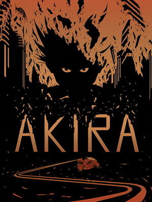 "039 Akira - Red Fighting Hot Japan Anime 14""x18"" Poster"
