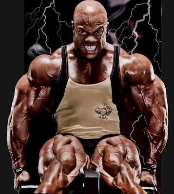 """248 GYM - Phil Heath Body Building Muscle Exercise Work Out 24""""x26"""" Poster"""