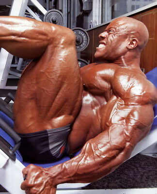"""249 GYM - Phil Heath Body Building Muscle Exercise Work Out 24""""x29"""" Poster"""