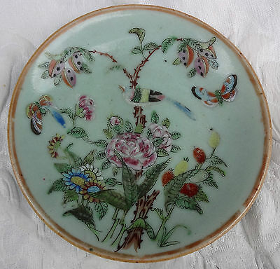 Antique CHINESE Famille Rose PORCELAIN CELADON PLATE - BUTTERFLY BIRD FLOWERS