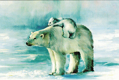 POLAR BEAR'S FAMILY Modern Russian postcard
