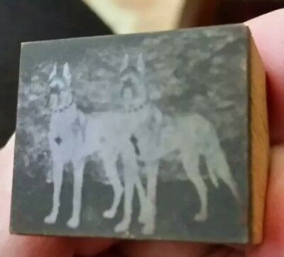 Old Print Block Depicting Boxer Dogs