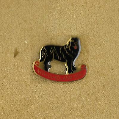 Newfoundland Dog Canada Old Pin