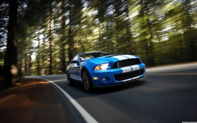 """048 Mustang - Ford Shelby GT500  Classic Racing Car concept 38""""x24"""" Poster"""