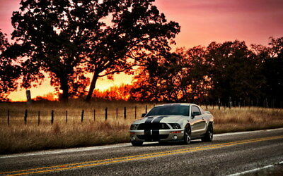 """062 Mustang - Ford Shelby GT500  Classic Racing Car concept 38""""x24"""" Poster"""