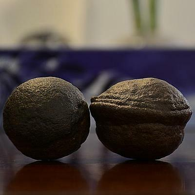 Beautiful Pair of Large Moqui Marbles (Shaman Stones) from Utah 299 grams