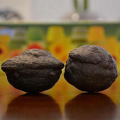 Beautiful Pair of Huge Moqui Marbles (Shaman Stones) from Utah 346 grams