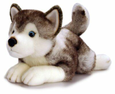 Husky Dog, Storm Plush Husky Teddy, 35cm Soft Toy by Keel Toys
