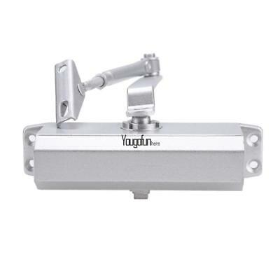 Silver 45-65kg Aluminum Commercial Door Closer Independent Valves Sweep 01