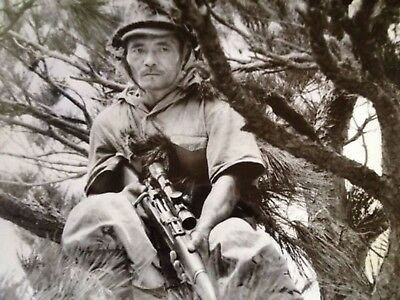 WWII Photo WW2 Japanese Sniper in Tree 1942  World War Two Japan / 2463