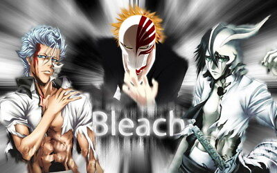 "164 Bleach - Dead Rukia Ichigo Fight Japan Anime 38""x24"" Poster"