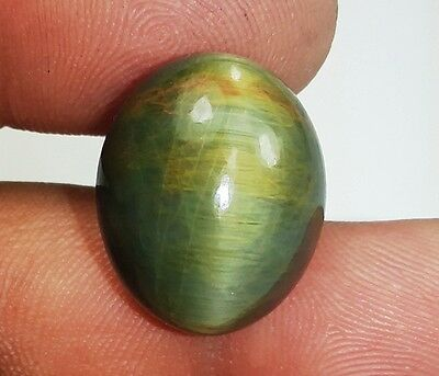 23.25 CT Cats Eye 100% Natural 18x15x12mm Top Awesome Qualitv Loose Gemstone 966