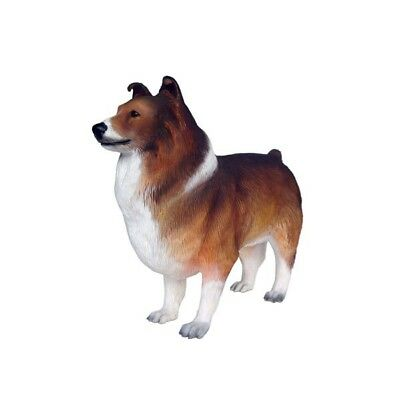 Dog Shetland Sheepdog Brown White Resin Statue Standing Display Prop
