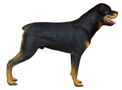 Dog Rottweiler Standing Black Tan Display Prop Decor Resin Statue