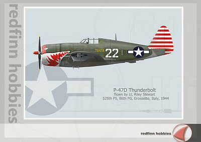 Warhead Illustrated P-47D Thunderbolt 525th FS, 86th FG, Aircraft Print