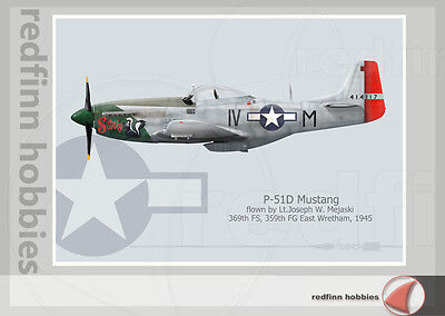Warhead Illustrated P-51D Mustang Stinky (Version 2) Aircraft Print
