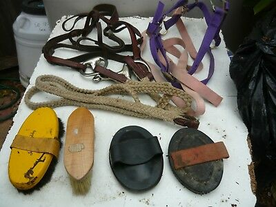 Collection of older quality horse tack eqpt. Bridle, halter, combs