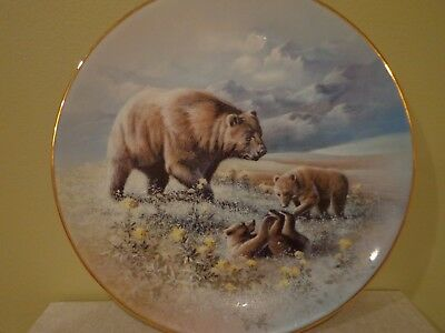 """Porcelean Collectors Plate Knowles """"The Tibetan Brown Bear"""" Wild Bears 1629A"""