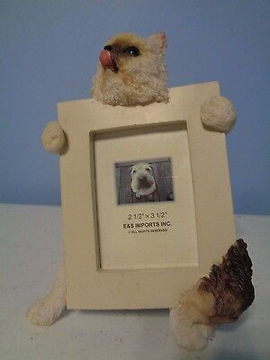 E&S IMPORTS 3-D Photo Frame Being Held by a Cat Kitten for 2.5 x 3.5 inch Photo