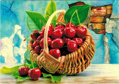 BASKET WITH CHERRIES Modern Russian postcard